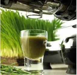omega_wheatgrass
