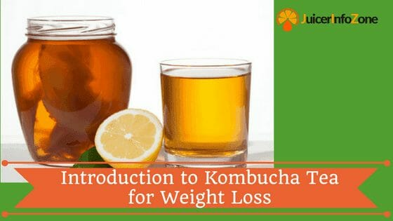 Introduction to Kombucha Tea for Weight Loss